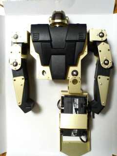 RoboZak25-4.jpg