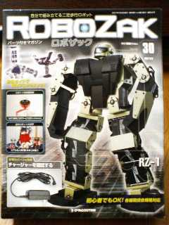 RoboZak30-1.jpg